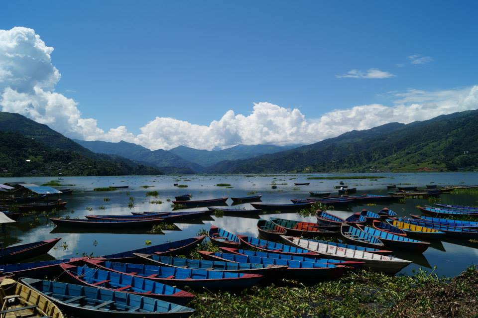 nepallie