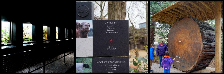 Gastblog: Vienna over Zoo Antwerpen
