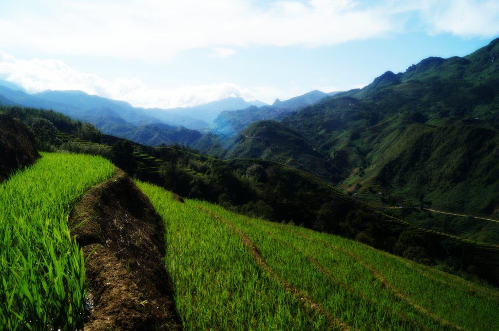 Must visit in Vietnam: Sapa