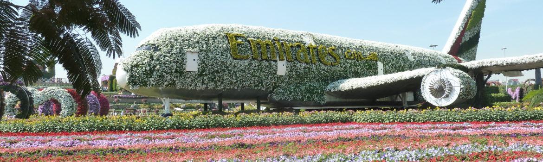 Must visit in Dubai: Dubai Miracle Garden