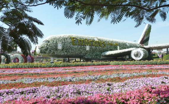 Must visit in Dubai: Dubai Miracle Garden